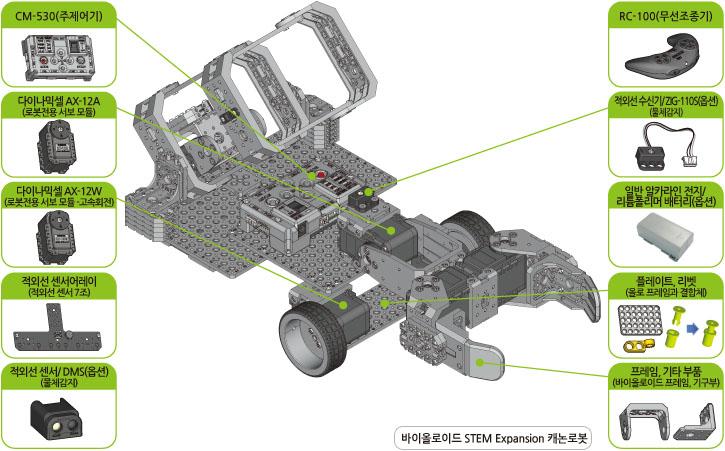 stem image02.jpg